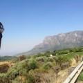 stellenbosch trainig